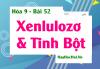 Tinh bột, Xenlulozơ Tính chất hóa học, Tính chất vật lý, Ứng dụng của Tinh bột và Xenlulozơ - Hóa 9 bài 52